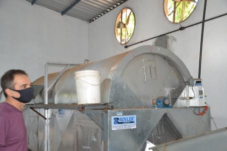 Colheita de Noz Pecã inicia neste mês em Taquari, e deve se estender até junho